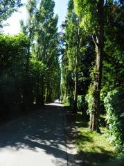 60-Assistens Kirkegård
